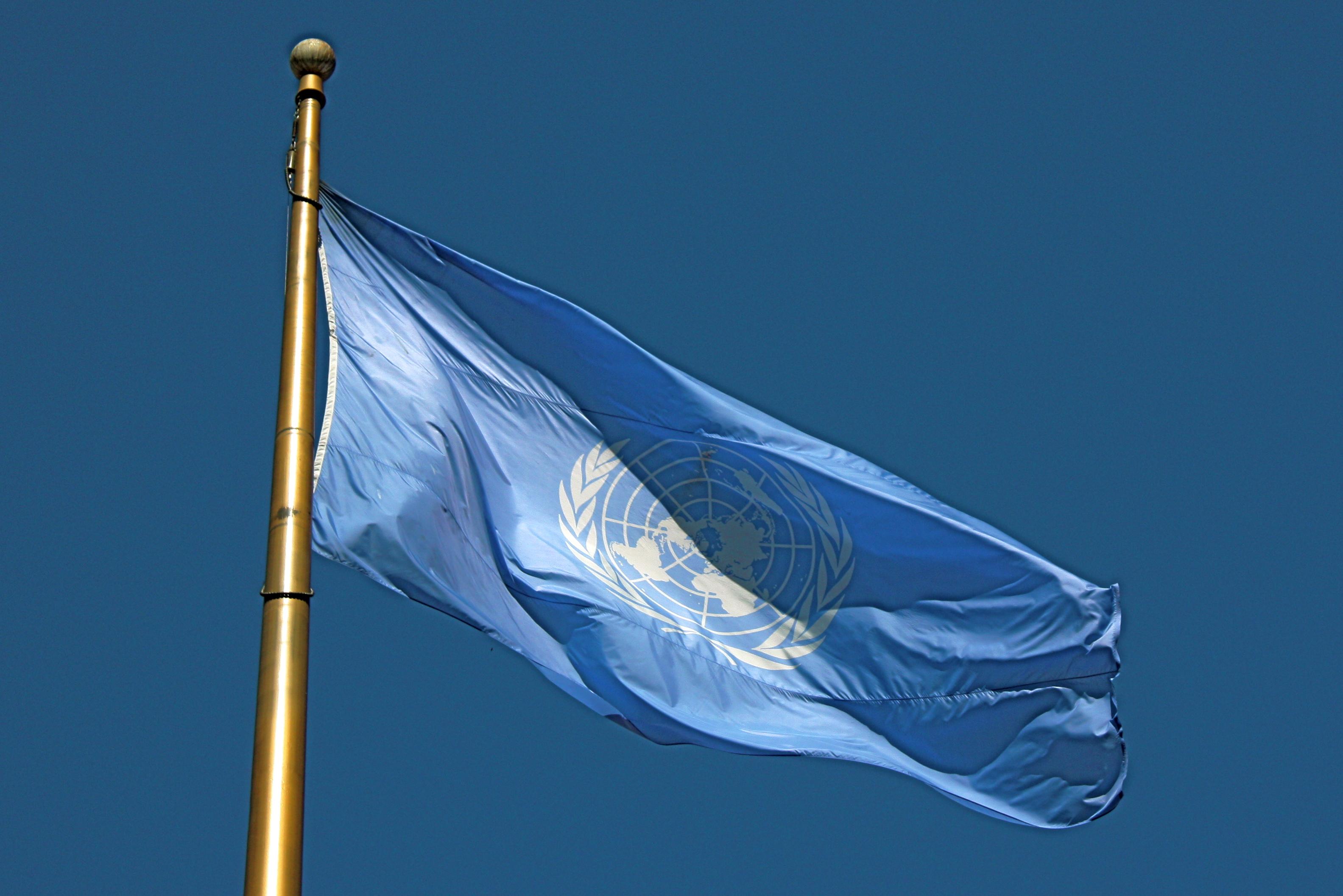 Die UNO flieht vor der Drogen-Realität